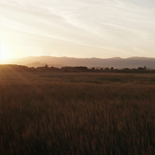 Turangi Region